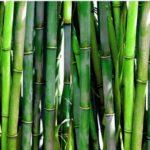 бамбук подушка