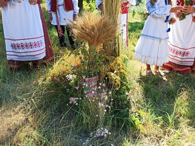 Дожинки в Беларуси
