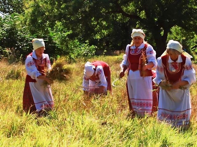 Дожинки в Белоруссии