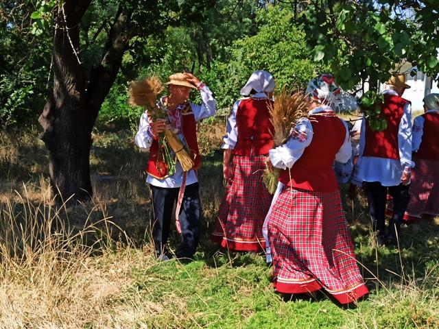Дожинки в Беларуси фото