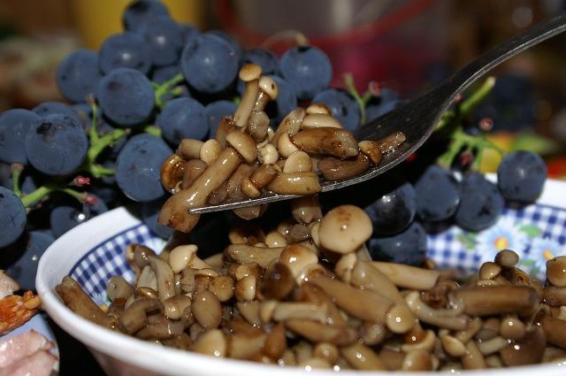 способ солить грибы