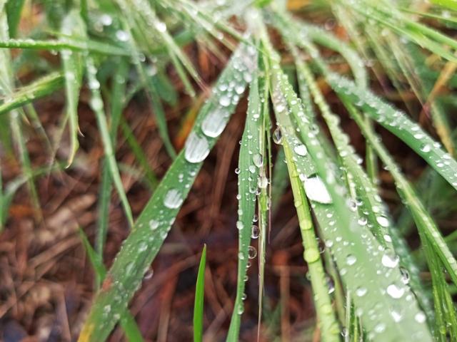 про дождь детям