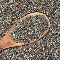Лечебные свойства конопли