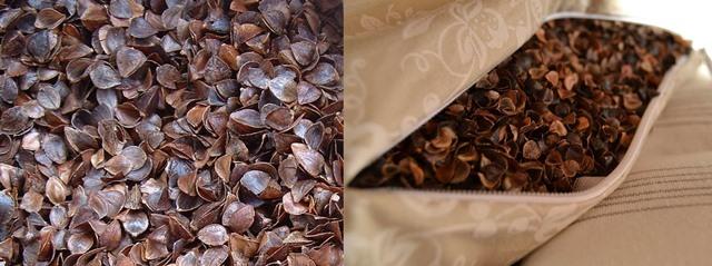 гречневая шелуха подушка